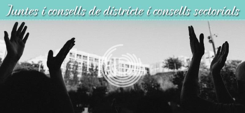Vocals Per A Les Juntes I Consells De Districte I Representants Als Consells Sectorials
