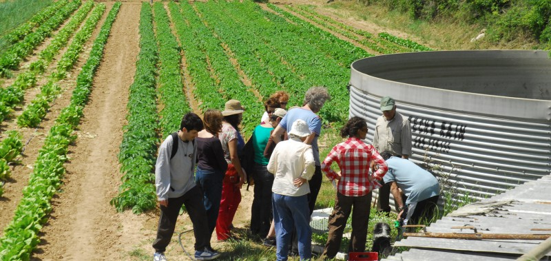Un Banc De Terres Municipal Basat En L'agricultura Ecològica I El Patrimoni De La Ciutat